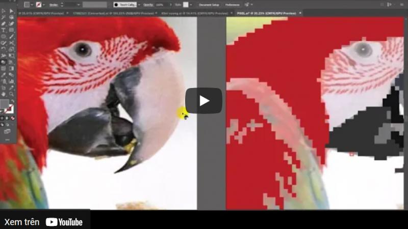 Cách vẽ Pixel Art trong Illustrator – vẽ một con chim két